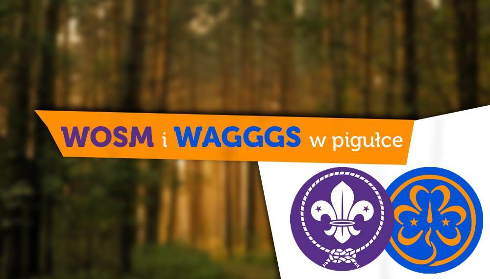 WOSM i WAGGGS, czyli to, co każdy ma na mundurze…